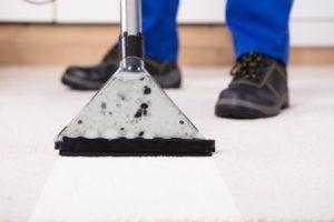 Dieses Bild zeigt das Ergebnis einer professionellen Teppichreinigung.